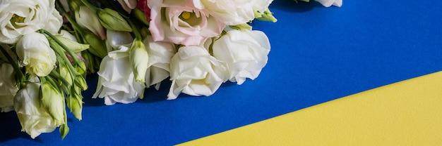 Weiße rosa eustoma-blumen auf blauer und gelber oberfläche im vintage-stil. draufsicht. weiße lisianthusblüte. banner-format für glückwünsche hochzeitseinladungskarten