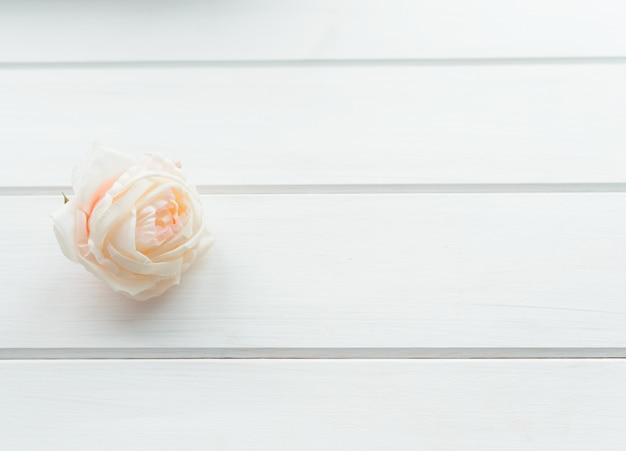 Weiße rose auf einem weißen hölzernen hintergrund