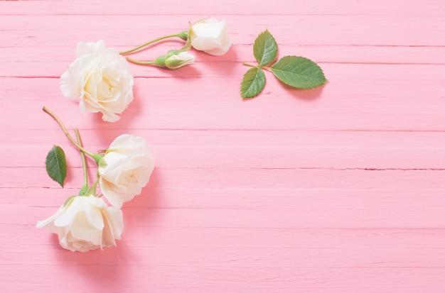 Weiße rosen auf rosa holzwand