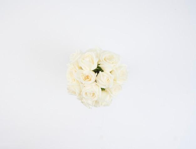 Weiße rosen blumen