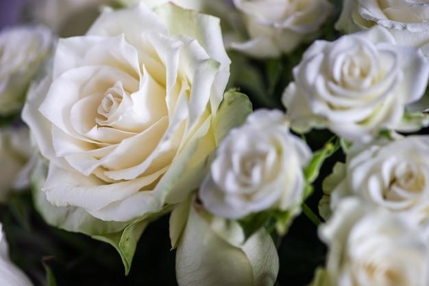 Weiße rosen im strauß