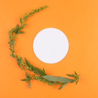 Weiße runde nahe grünpflanze