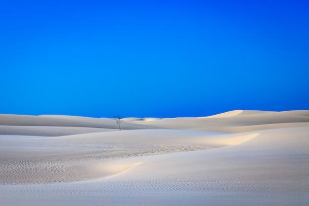 Weiße sanddünen mit blauem himmel in den maranhenses-blättern