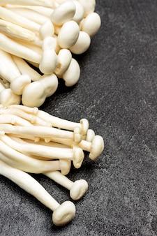 Weiße shimeji-pilze schließen den kopierraum