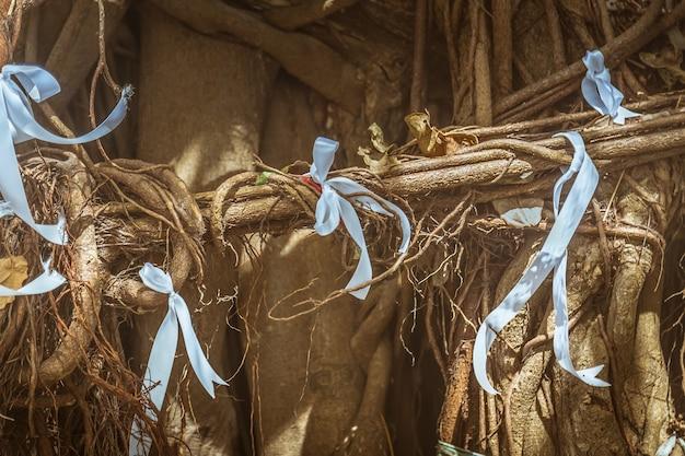 Weiße stoffbänder, die an den wurzeln heiliger bäume gebunden sind