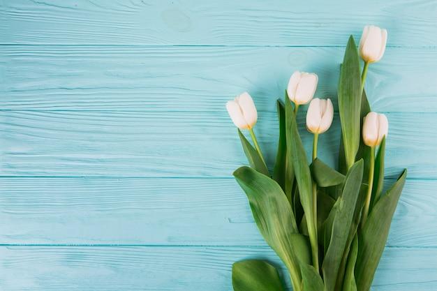 Weiße tulpenblumen auf blauem holztisch