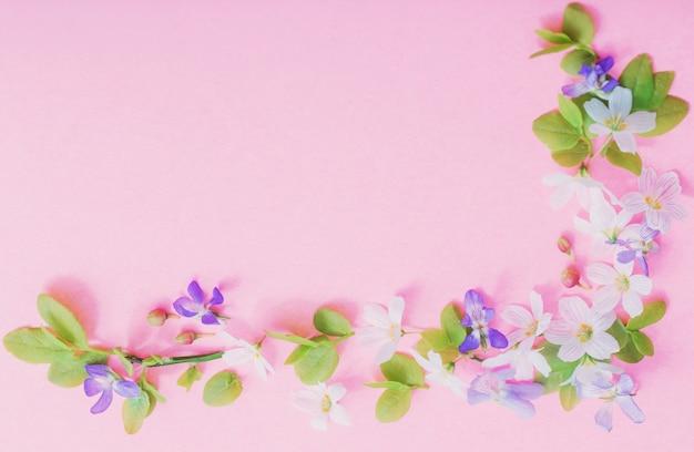 Weiße und blaue blumen auf rosa papieroberfläche