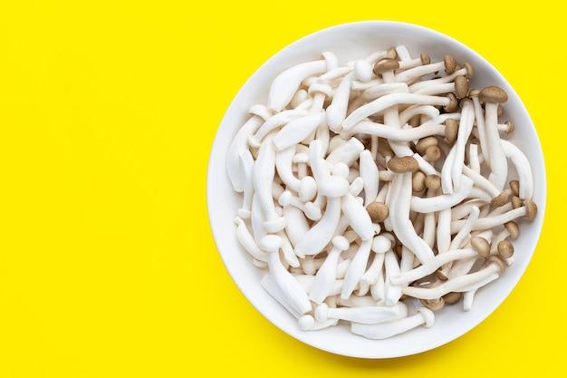 Weiße und braune buchenpilze, shimeji-pilz, speisepilz auf gelbem hintergrund.