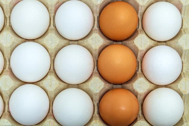 Weiße und braune hühnereier in tablett