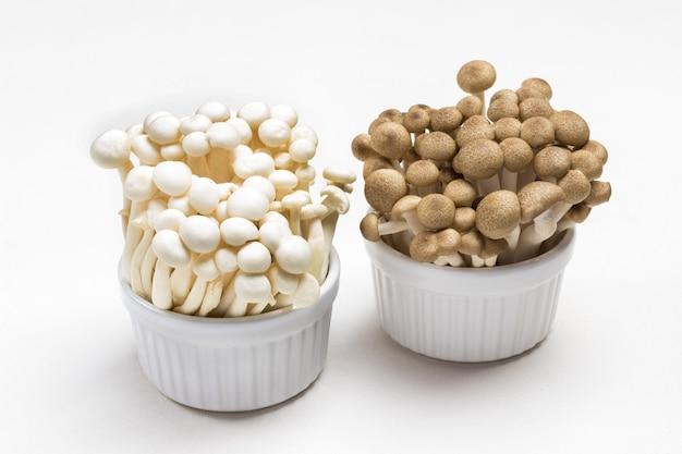 Weiße und gebratene shimeji-pilze in keramikschalen