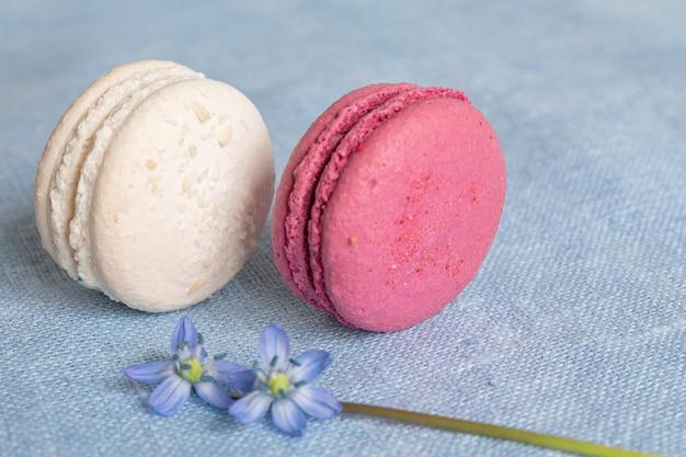 Weiße und rote makronen und frühlingsblume auf einer leinenserviette. macarons oder macaroons sind französische oder italienische nachspeisen.