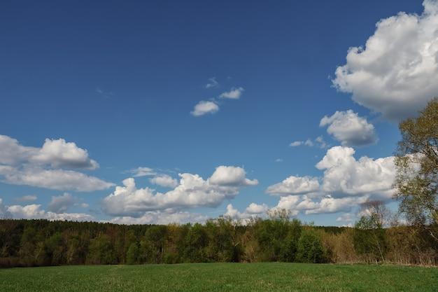 Weiße wolken, die sich über einem grünen wald und an einem blauen himmel bilden.