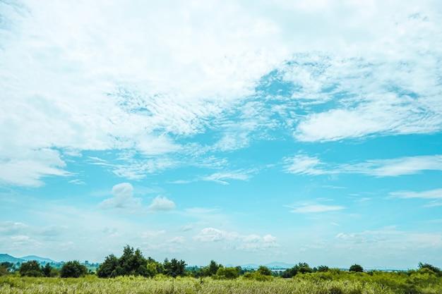Weiße wolken und blauer himmel mit bäumen der schönen ansicht gestalten landschaftlich