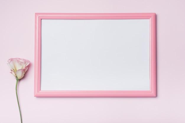 Weißer bilderrahmen des rosa randes mit eustomablume gegen hintergrund