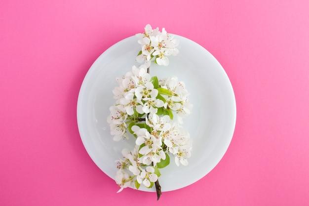 Weißer blühender ast auf der weißen platte in der mitte der rosa oberfläche. draufsicht. frühlingsblumenkonzept. nahansicht.