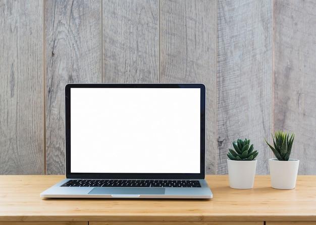 Weißer blumentopf des kaktus nahe dem offenen laptop, der weißen leeren bildschirm auf tabelle anzeigt