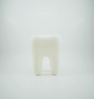 Weißer gesunder menschlicher zahn lokalisiert