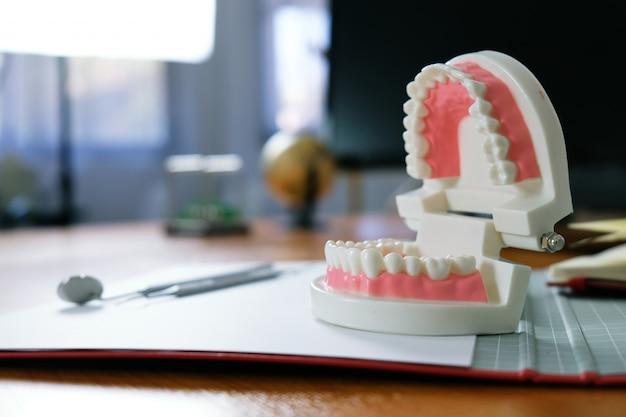 Weißer gesunder zahn mit zahnmedizinischem modell im mundpflegekonzept.