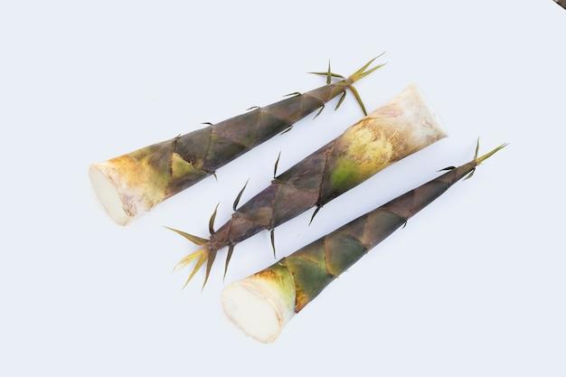 Weißer hintergrund der frischen bambussprossen.