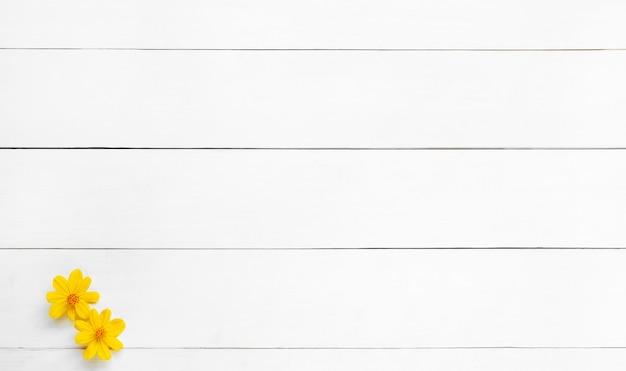 Weißer holzboden textur und hintergrund. gelbe blume auf weißem holzhintergrund.