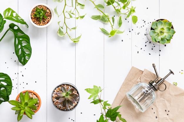 Weißer holzhintergrund mit pflanzen