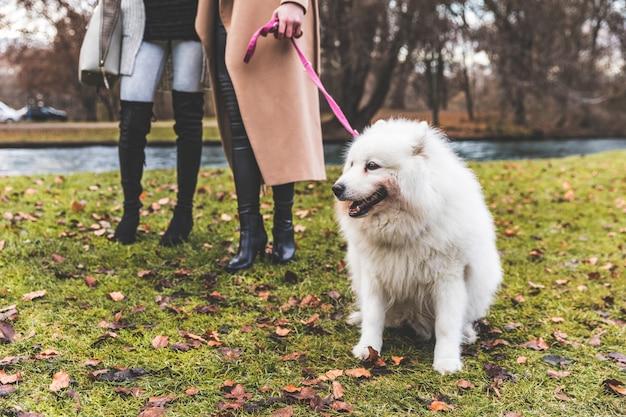 Weißer hund an der leine im park mit zwei frauen