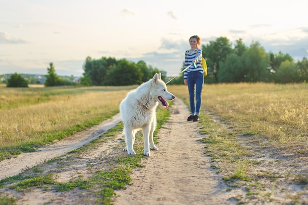 Weißer husky-hund der nahaufnahme auf landstraße