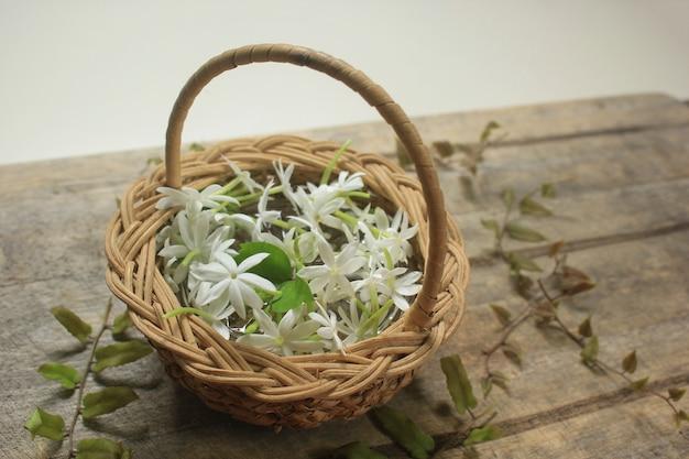Weißer jasminkorb vor ort mit beschneidungspfad.