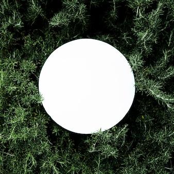 Weißer kreisförmiger leerer Rahmen über dem Blumenhintergrund