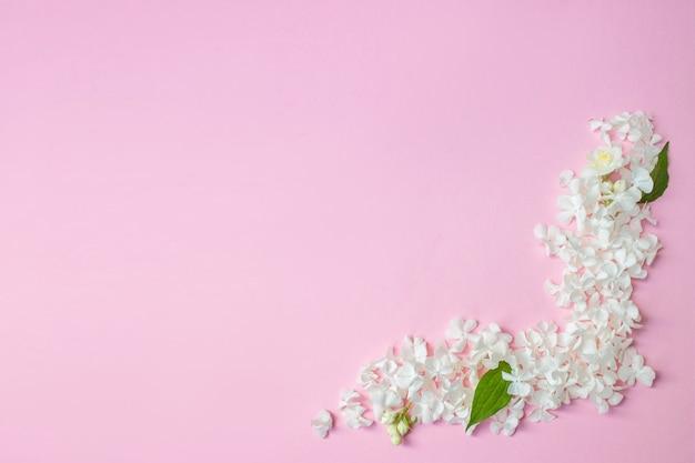 Weißer rahmen leer, blütenblätter für spa oder hochzeitsmodell auf rosa hintergrund-draufsicht. schön