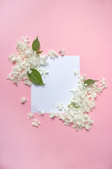 Weißer rahmen leer, blütenblätter für spa oder hochzeitsmodell auf rosa hintergrund-draufsicht. schöne blumen