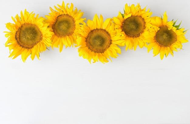 Weißer rustikaler hintergrund mit sonnenblumen draufsicht herbsthintergrund mit gelben blumen