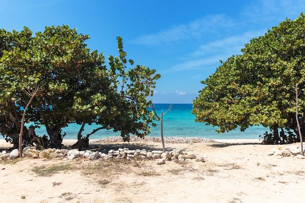 Weißer sandstrand in kuba