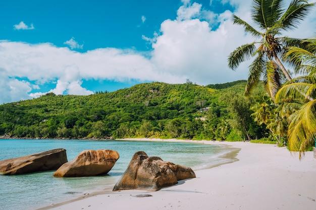 Weißer sandstrand, kokospalmen und blaue lagune der tropischen insel, anse takamaka strand, seychellen.