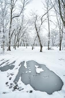 Weißer schneebedeckter winterstadtpark mit gefrorener pfütze mitten auf der straße.