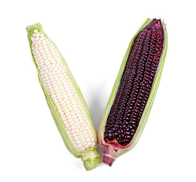 Weißer und purpurroter mais lokalisiert auf weißem hintergrund. ansicht von oben