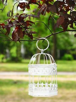 Weißer weinlesevogelkäfig, der am zweig hängt