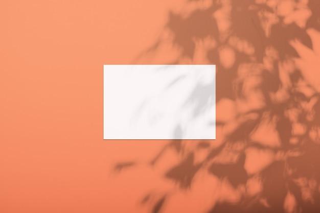 Weißes blatt auf einer üppigen lavafarbenen wand mit einem schatten von einem baum