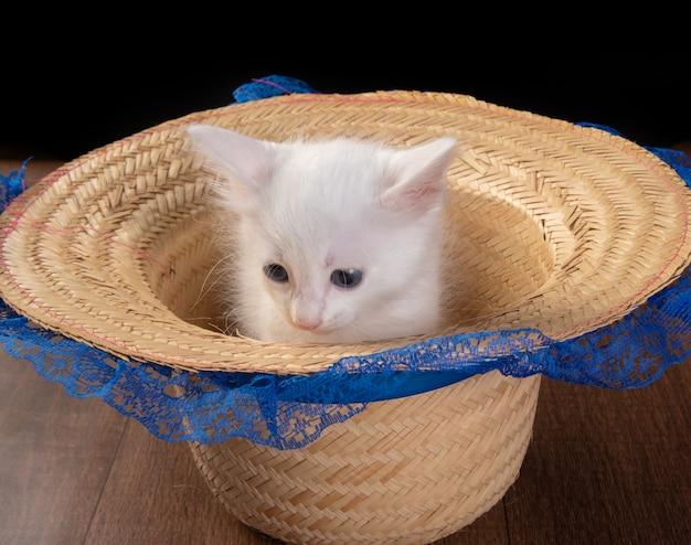 Weißes kätzchen, weißes kätzchen, das in einem strohhut mit spitze auf einem holztisch spielt.