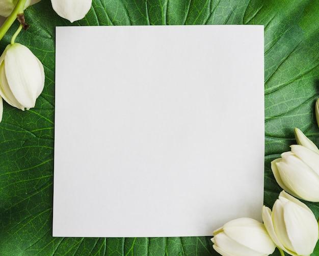 Weißes leeres papier auf grünem blatt mit weißer blume