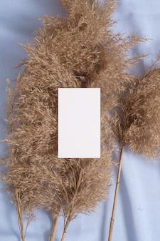 Weißes leeres papierkartenmodell mit trockenem gras der pampa auf blauem neutralen textil