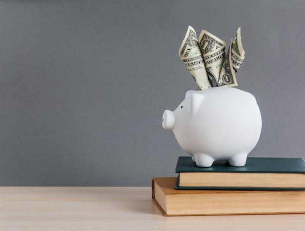 Weißes sparschwein und us-dollar