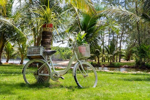 Weißes vintage fahrrad mit korb der dekorativen pflanzen im garten neben tropischem strand auf insel phu quoc, vietnam. reise- und naturkonzept