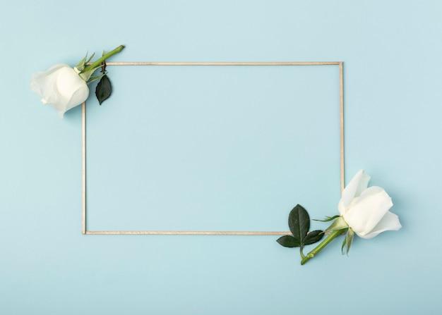 Weißrosenblumen und -rahmen auf blauem hintergrund