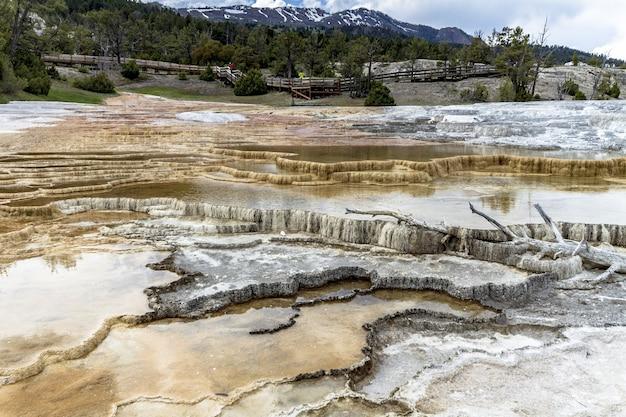 Weitwinkelaufnahme des yellowstone-nationalparks unter einem bewölkten himmel, umgeben von grün und bergen