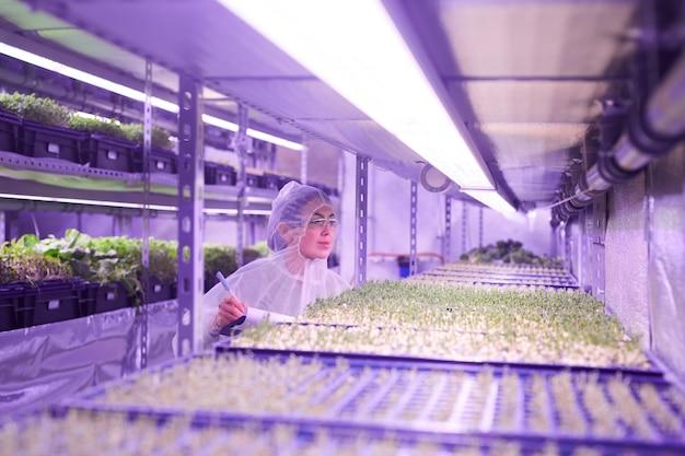 Weitwinkelporträt des weiblichen agraringenieurs, der pflanzen im kindergartengewächshaus untersucht, beleuchtet durch blaues licht, kopienraum