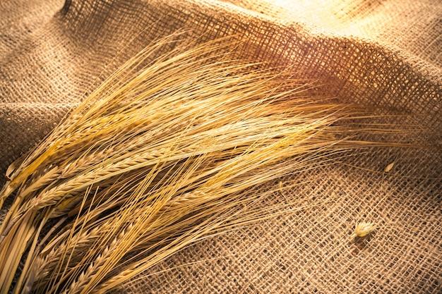 Weizenähren auf einem sack