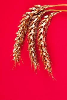 Weizenähren gemalt mit goldfarbe auf einem roten hintergrund. top twist. kopieren sie platz. goldener weizen.