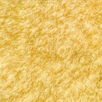 Weizenfeld natürliches muster, drohnenaufnahme direkt darüber
