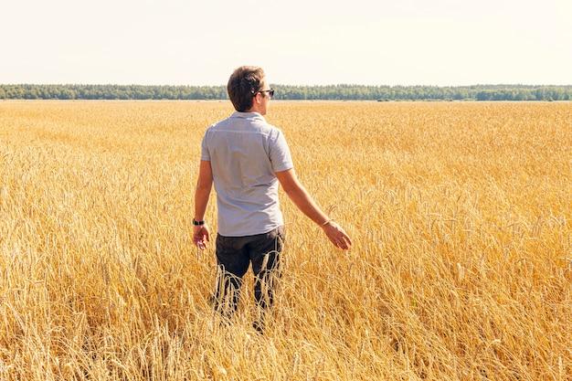 Weizenkörner in den händen eines bauern auf dem weizenfeldhintergrund. reifes ohr in der hand eines mannes. getreideernte. thema landwirtschaft.
